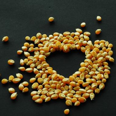 Corn-heart-p